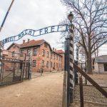 Auschwitz Kraków Wieliczka